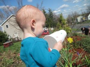 Spring Mulching